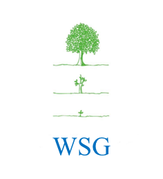 株式会社WSG