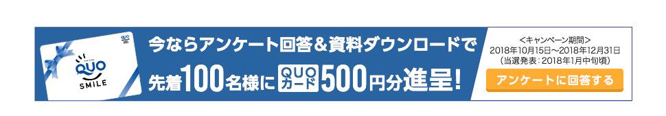 今ならアンケート回答& 資料ダウンロードで先着100名様にQUOカード500円分進呈!